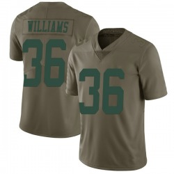 Limited Men's Terry Williams New York Jets Nike 2017 Salute to Service Jersey - Green